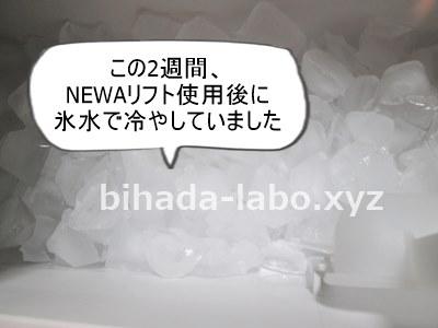 ice400-1
