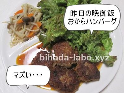 bi-okara-day21