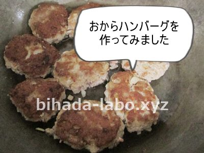 bi-okara-hamb