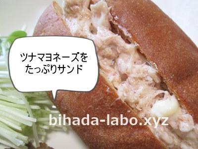 bi-tuna-sand