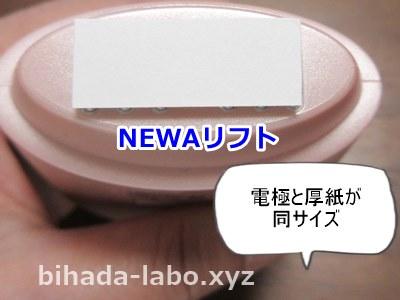 bi-newa-head-paper