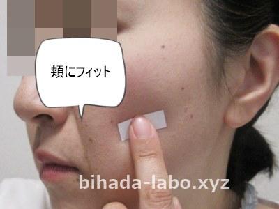 bi-newa-paper-hoho
