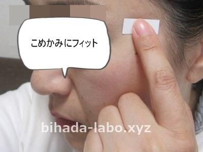 bi-newa-paper-komekami