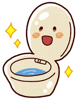 toilet250