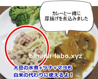 curry-atuage-daizu
