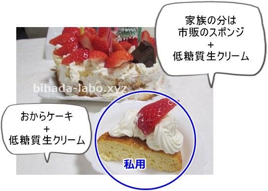 jisaku-xmas-cake