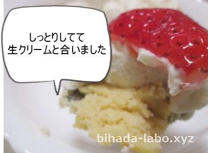 okara-cake-xmas